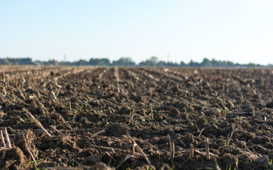TACKLING THE CHALLENGE OF SOIL COMPACTION