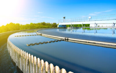 NUTRIENT POLLUTION – TACKLING THE CHALLENGE