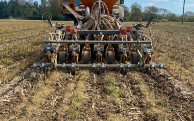 Strip-tilling: a perspective from Frans de Boer