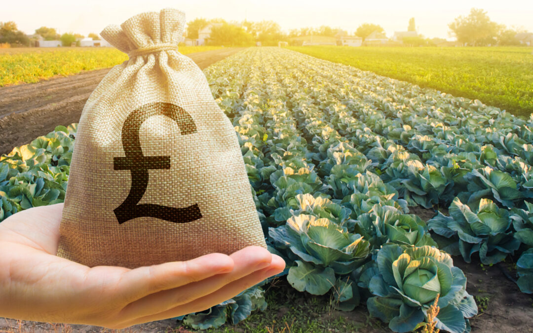FARMING SUBSIDIES: A NEW DIRECTION, BUT MAJOR HURDLES LAY AHEAD