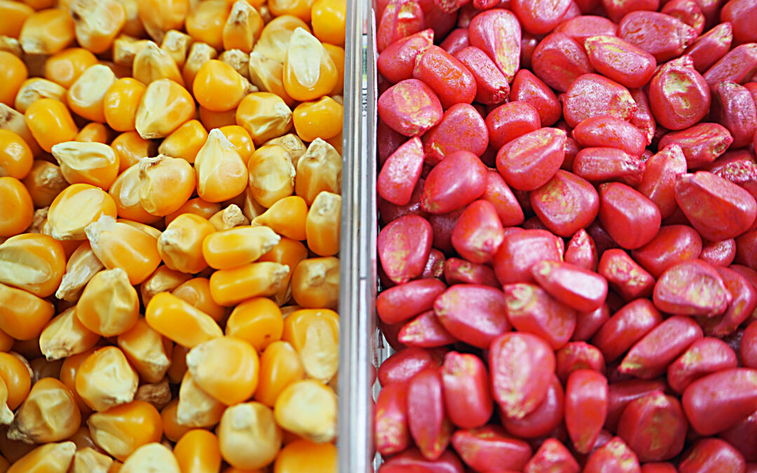 FARMING WITHOUT CHEMICAL SEED TREATMENTS: AN AGRONOMIST'S VIEW